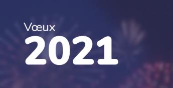 Les équipes du GIP SESAN vous souhaitent une excellente année 2021 !